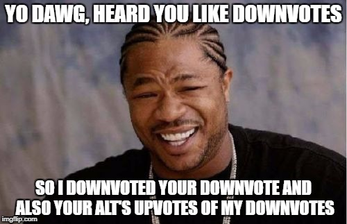 Yo Dawg Heard You Meme | YO DAWG, HEARD YOU LIKE DOWNVOTES SO I DOWNVOTED YOUR DOWNVOTE AND ALSO YOUR ALT'S UPVOTES OF MY DOWNVOTES | image tagged in memes,yo dawg heard you | made w/ Imgflip meme maker