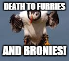 DEATH TO FURRIES AND BRONIES! | made w/ Imgflip meme maker