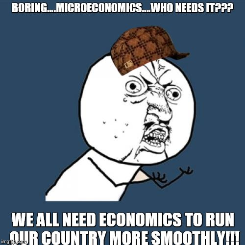Y U No Meme | BORING....MICROECONOMICS....WHO NEEDS IT??? WE ALL NEED ECONOMICS TO RUN OUR COUNTRY MORE SMOOTHLY!!! | image tagged in memes,y u no,scumbag | made w/ Imgflip meme maker