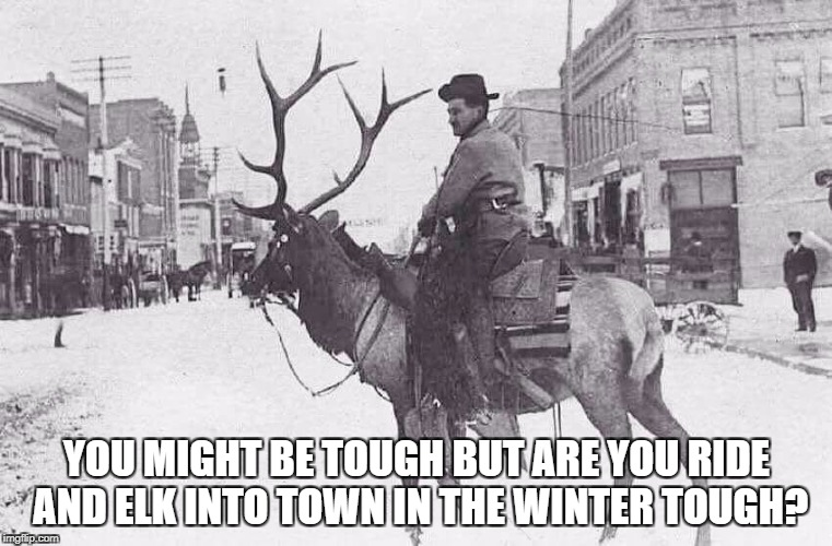 YOU MIGHT BE TOUGH BUT ARE YOU RIDE AND ELK INTO TOWN IN THE WINTER TOUGH? | image tagged in cowboys,cowboy,how tough are you,badass,you suck,manly | made w/ Imgflip meme maker