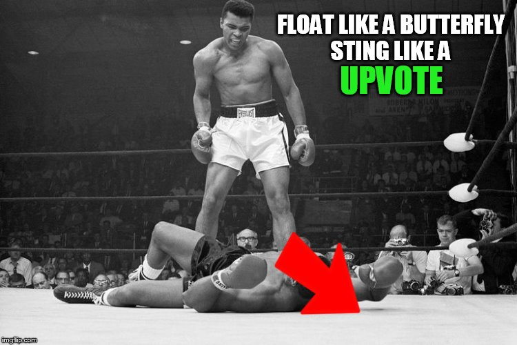 Down With Downvotes Weekend Dec 8-10, a JBmemegeek, 1forpeace & isayisay campaign! | FLOAT LIKE A BUTTERFLY STING LIKE A UPVOTE | image tagged in down with downvotes weekend,down with downvotes,muhammad ali,downvotes,memes,upvotes | made w/ Imgflip meme maker