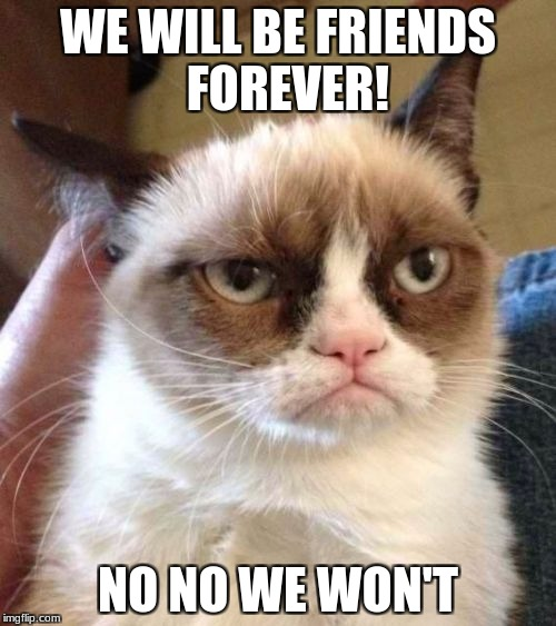 Grumpy Cat Reverse | WE WILL BE FRIENDS  FOREVER! NO NO WE WON'T | image tagged in memes,grumpy cat reverse,grumpy cat | made w/ Imgflip meme maker
