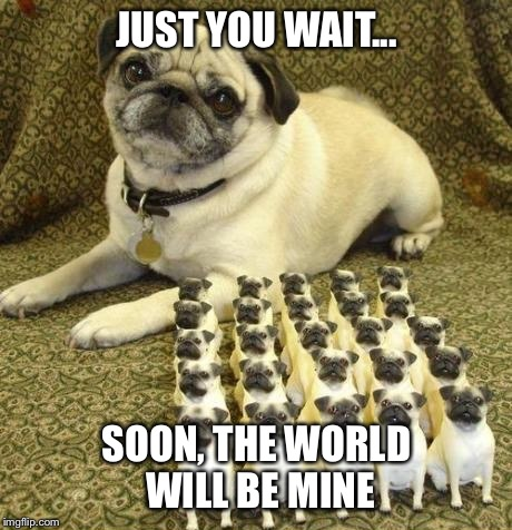 Just you wait... | JUST YOU WAIT... SOON, THE WORLD WILL BE MINE | image tagged in memes,funny | made w/ Imgflip meme maker