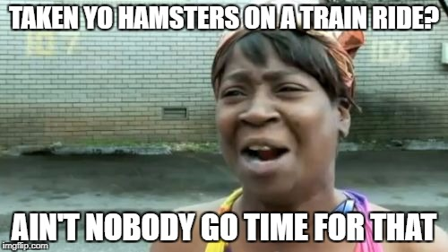 Aint Nobody Got Time For That Meme | TAKEN YO HAMSTERS ON A TRAIN RIDE? AIN'T NOBODY GO TIME FOR THAT | image tagged in memes,aint nobody got time for that | made w/ Imgflip meme maker