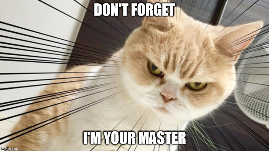 DON'T FORGET I'M YOUR MASTER | made w/ Imgflip meme maker
