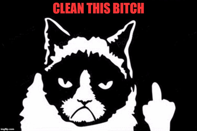Grumpy Cat Flipping The Bird | CLEAN THIS B**CH | image tagged in grumpy cat flipping the bird | made w/ Imgflip meme maker