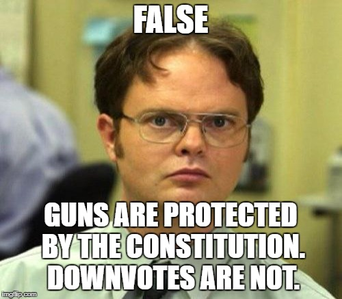FALSE GUNS ARE PROTECTED BY THE CONSTITUTION. DOWNVOTES ARE NOT. | made w/ Imgflip meme maker