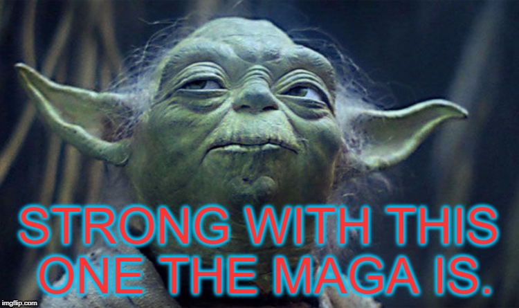 Strong with this one the MAGA is. | STRONG WITH THIS ONE THE MAGA IS. | image tagged in trump,maga,yoda,usa | made w/ Imgflip meme maker