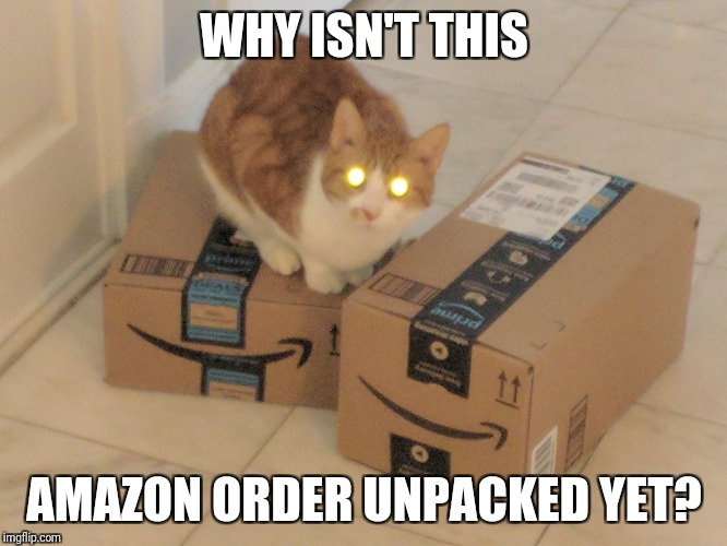 WHY ISN'T THIS AMAZON ORDER UNPACKED YET? | made w/ Imgflip meme maker