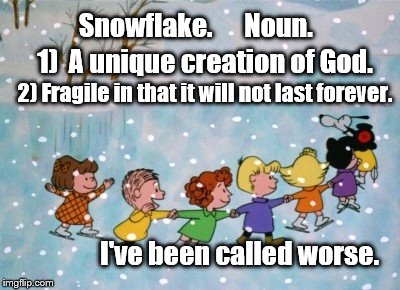 Merry Christmas | Snowflake.      Noun. 1)  A unique creation of God. 2) Fragile in that it will not last forever. I've been called worse. | image tagged in christmas,merry christmas,snowflake | made w/ Imgflip meme maker