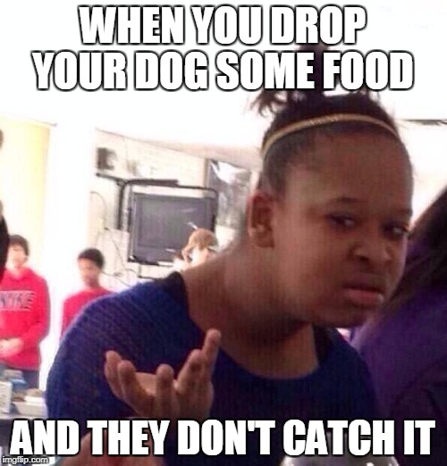 Dog Food Wat | WHEN YOU DROP YOUR DOG SOME FOOD AND THEY DON'T CATCH IT | image tagged in memes,black girl wat | made w/ Imgflip meme maker