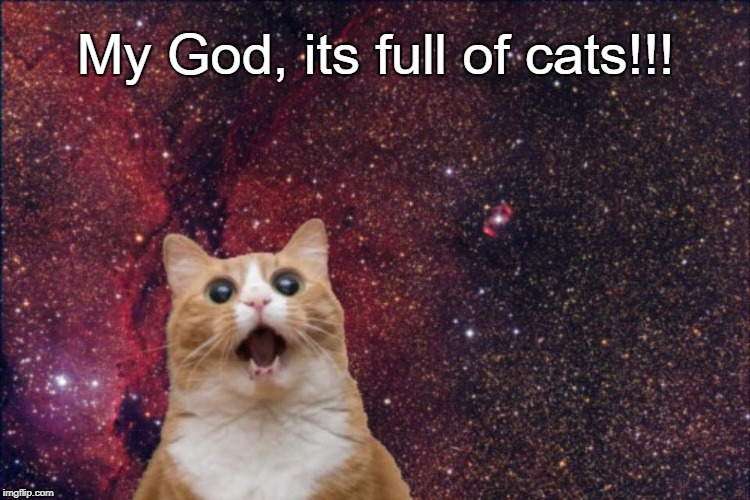 My God, its full of cats!!! | image tagged in space cat | made w/ Imgflip meme maker