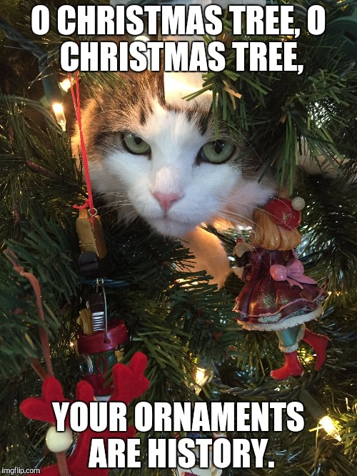 Every time... |  O CHRISTMAS TREE, O CHRISTMAS TREE, YOUR ORNAMENTS ARE HISTORY. | image tagged in christmas tree cat,christmas,cat,trouble,memes | made w/ Imgflip meme maker