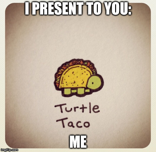 Taco Turtle | I PRESENT TO YOU: ME | image tagged in turtle | made w/ Imgflip meme maker