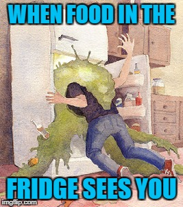 WHEN FOOD IN THE FRIDGE SEES YOU | made w/ Imgflip meme maker