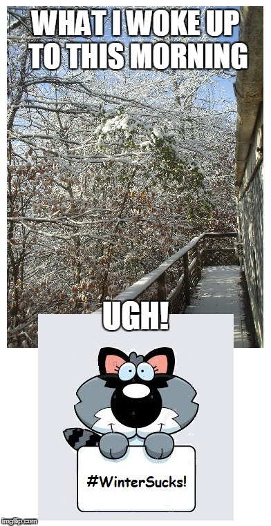 I live in a single wide tin can on the side of a mountain in the woods of the foothills of the Smoky Mountains in east Tennessee | WHAT I WOKE UP TO THIS MORNING UGH! | image tagged in winter is here,cold weather | made w/ Imgflip meme maker