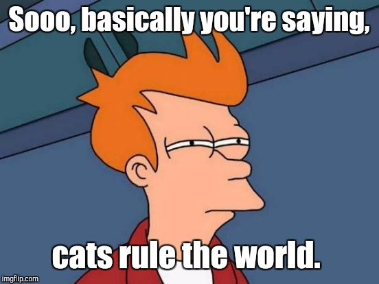 Futurama Fry Meme | Sooo, basically you're saying, cats rule the world. | image tagged in memes,futurama fry | made w/ Imgflip meme maker