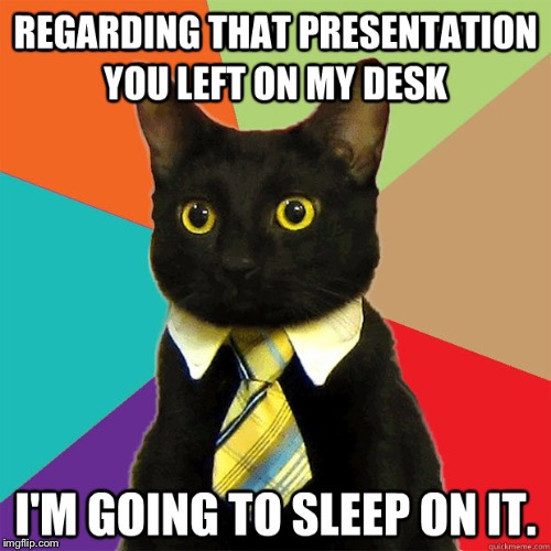 REGARDING THAT PRESENTATION YOU LEFT ON MY DESK I'M GOING TO SLEEP ON IT | image tagged in memes,business cat | made w/ Imgflip meme maker