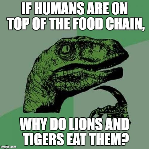 Philosoraptor Meme | IF HUMANS ARE ON TOP OF THE FOOD CHAIN, WHY DO LIONS AND TIGERS EAT THEM? | image tagged in memes,philosoraptor | made w/ Imgflip meme maker