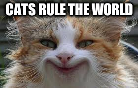 CATS RULE THE WORLD | made w/ Imgflip meme maker