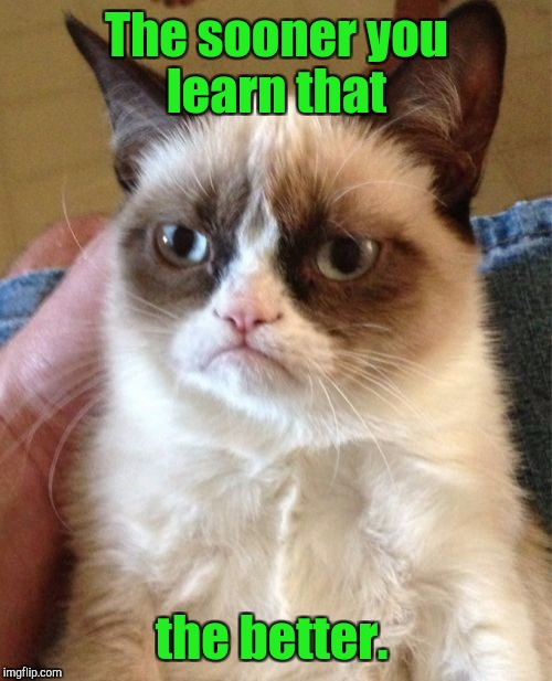 Grumpy Cat Meme | The sooner you learn that the better. | image tagged in memes,grumpy cat | made w/ Imgflip meme maker