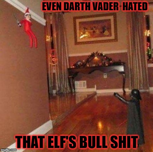 EVEN DARTH VADER  HATED THAT ELF'S BULL SHIT | image tagged in vader vs elf,elf on the shelf,darth vader | made w/ Imgflip meme maker