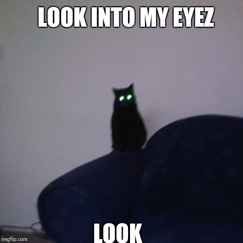 Black cat  | LOOK INTO MY EYEZ LOOK | image tagged in black cat | made w/ Imgflip meme maker