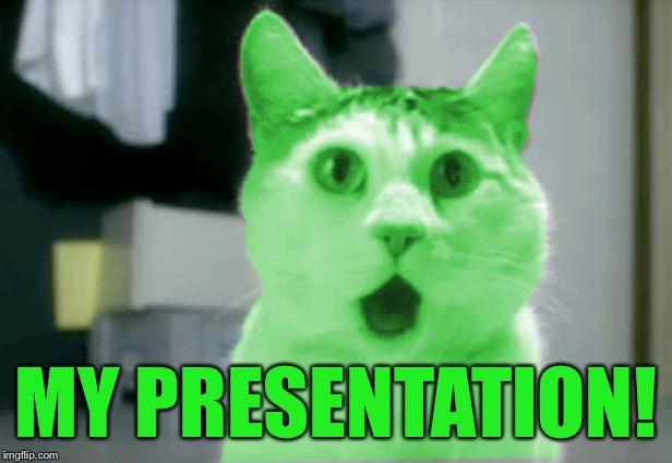 OMG RayCat | MY PRESENTATION! | image tagged in omg raycat | made w/ Imgflip meme maker