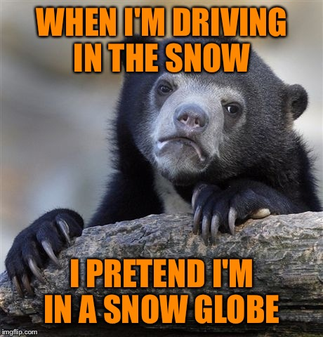 Confession Bear Meme | WHEN I'M DRIVING IN THE SNOW I PRETEND I'M IN A SNOW GLOBE | image tagged in memes,confession bear,lynch1979,lol | made w/ Imgflip meme maker