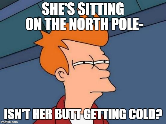 Futurama Fry Meme | SHE'S SITTING ON THE NORTH POLE- ISN'T HER BUTT GETTING COLD? | image tagged in memes,futurama fry | made w/ Imgflip meme maker