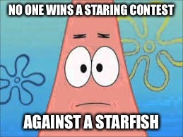 NO ONE WINS A STARING CONTEST AGAINST A STARFISH | made w/ Imgflip meme maker