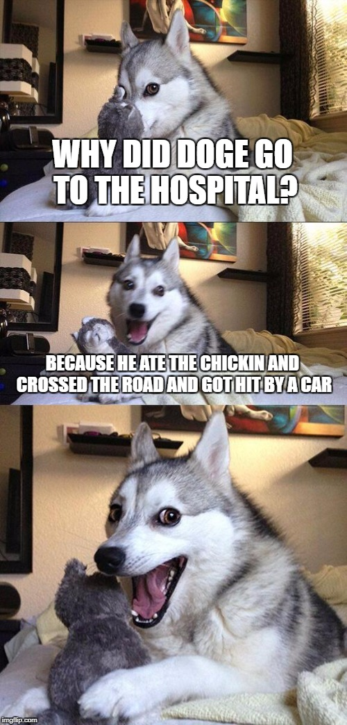 Bad Pun Dog Meme | WHY DID DOGE GO TO THE HOSPITAL? BECAUSE HE ATE THE CHICKIN AND CROSSED THE ROAD AND GOT HIT BY A CAR | image tagged in memes,bad pun dog | made w/ Imgflip meme maker