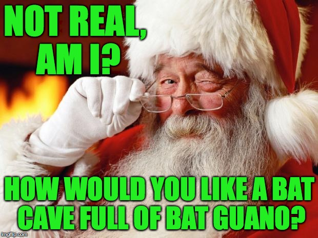 NOT REAL, AM I? HOW WOULD YOU LIKE A BAT CAVE FULL OF BAT GUANO? | made w/ Imgflip meme maker