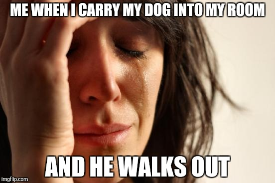 First World Problems Meme | ME WHEN I CARRY MY DOG INTO MY ROOM AND HE WALKS OUT | image tagged in memes,first world problems | made w/ Imgflip meme maker