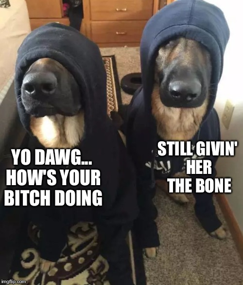 YO DAWG... HOW'S YOUR B**CH DOING STILL GIVIN' HER THE BONE | image tagged in k9 undercover | made w/ Imgflip meme maker