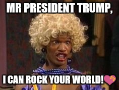 MR PRESIDENT TRUMP, I CAN ROCK YOUR WORLD! | image tagged in jamie foxx wanda birthday meme | made w/ Imgflip meme maker