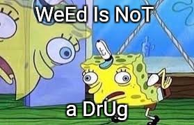 WeEd Is NoT a DrUg | image tagged in spongebob | made w/ Imgflip meme maker