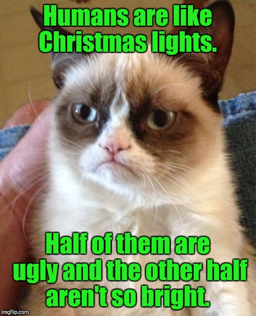 Grumpy Cat Meme | Humans are like Christmas lights. Half of them are ugly and the other half aren't so bright. | image tagged in memes,grumpy cat | made w/ Imgflip meme maker
