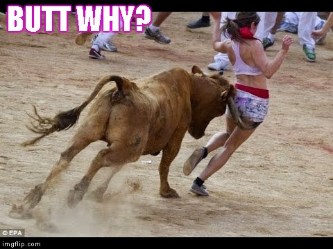 Bull vs. Woman | BUTT WHY? | image tagged in memes,butt why,bull,woman,chase | made w/ Imgflip meme maker