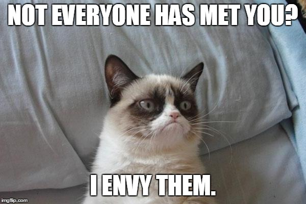 NOT EVERYONE HAS MET YOU? I ENVY THEM. | made w/ Imgflip meme maker