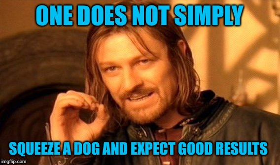 One Does Not Simply Meme | ONE DOES NOT SIMPLY SQUEEZE A DOG AND EXPECT GOOD RESULTS | image tagged in memes,one does not simply | made w/ Imgflip meme maker