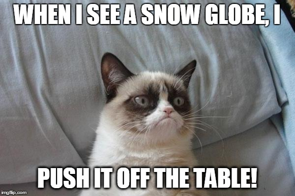 WHEN I SEE A SNOW GLOBE, I PUSH IT OFF THE TABLE! | made w/ Imgflip meme maker