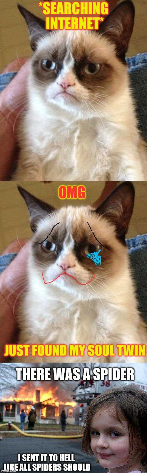 grumpy cat's soul twin | *SEARCHING INTERNET* OMG JUST FOUND MY SOUL TWIN THERE WAS A SPIDER I SENT IT TO HELL LIKE ALL SPIDERS SHOULD | image tagged in grumpy cat | made w/ Imgflip meme maker