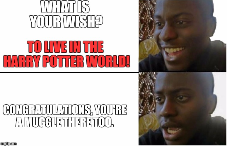 Disappointed Black Guy | WHAT IS YOUR WISH? CONGRATULATIONS, YOU'RE A MUGGLE THERE TOO. TO LIVE IN THE HARRY POTTER WORLD! | image tagged in disappointed black guy | made w/ Imgflip meme maker