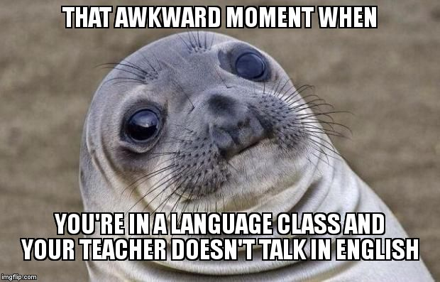 Awkward Moment Sealion Meme | THAT AWKWARD MOMENT WHEN YOU'RE IN A LANGUAGE CLASS AND YOUR TEACHER DOESN'T TALK IN ENGLISH | image tagged in memes,awkward moment sealion,school,language | made w/ Imgflip meme maker