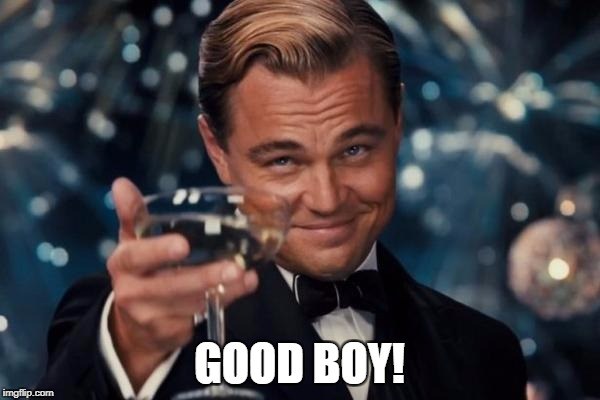 GOOD BOY! | image tagged in memes,leonardo dicaprio cheers | made w/ Imgflip meme maker