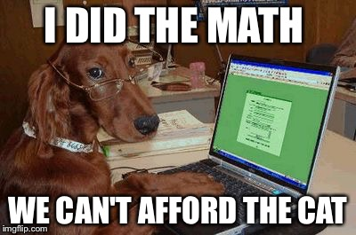 Dog with Glasses on Computer | I DID THE MATH WE CAN'T AFFORD THE CAT | image tagged in dog with glasses on computer | made w/ Imgflip meme maker