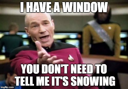 Picard Wtf Meme | I HAVE A WINDOW YOU DON'T NEED TO TELL ME IT'S SNOWING | image tagged in memes,picard wtf,funny | made w/ Imgflip meme maker