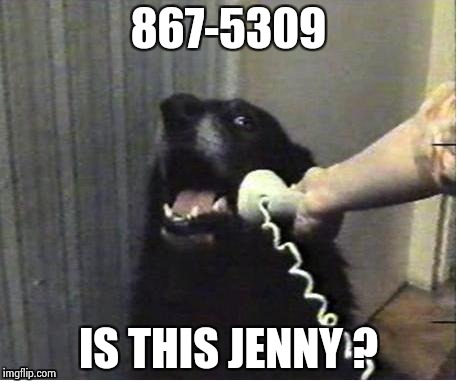 It's for you | 867-5309 IS THIS JENNY ? | image tagged in it's for you | made w/ Imgflip meme maker