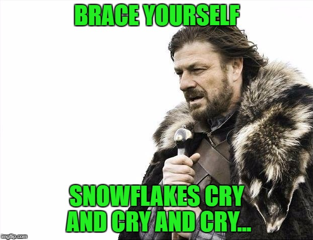 Brace Yourselves X is Coming Meme | BRACE YOURSELF SNOWFLAKES CRY AND CRY AND CRY... | image tagged in memes,brace yourselves x is coming | made w/ Imgflip meme maker